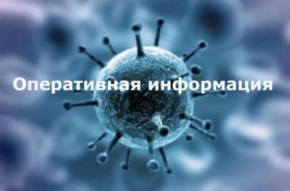 За последние сутки в Хакасии – 24 новых случая коронавирусной инфекции